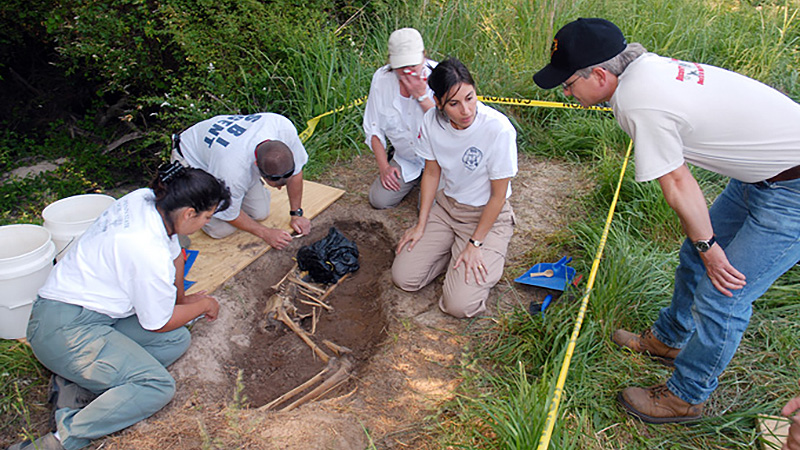 Awesome Jobs Meet Ann Ross Forensic Anthropologist Tested
