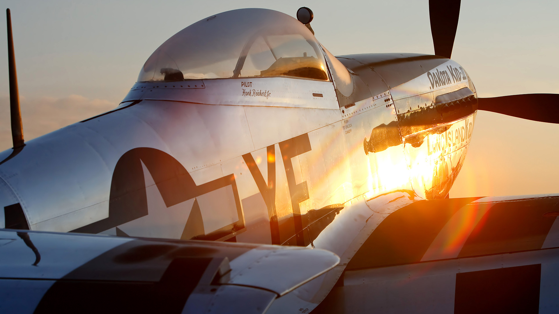 The p 51 mustang is a favorite of pilots and aviation enthusiasts owning one of these war machines is a huge commitment in many ways lee ray photo