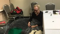Adam Savage Sad Totoro
