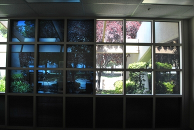 Affordable Smart Glass Possible in the Near Future - Tested