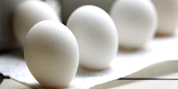 How an Egg Can Make You a Better Photographer - Tested